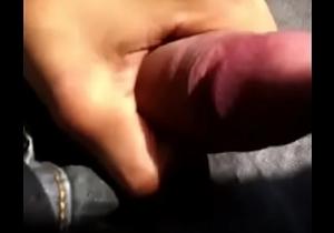 Public masturbation on the bus